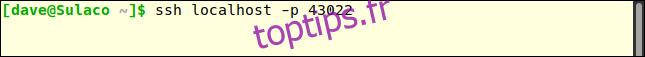 ssh localhost -p 43022 dans une fenêtre de terminal
