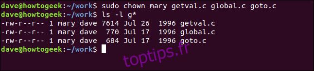 ls -l getval.c global.c goto.c dans une fenêtre de terminal