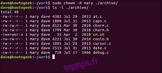 ls -l ./archive/ dans une fenêtre de terminal