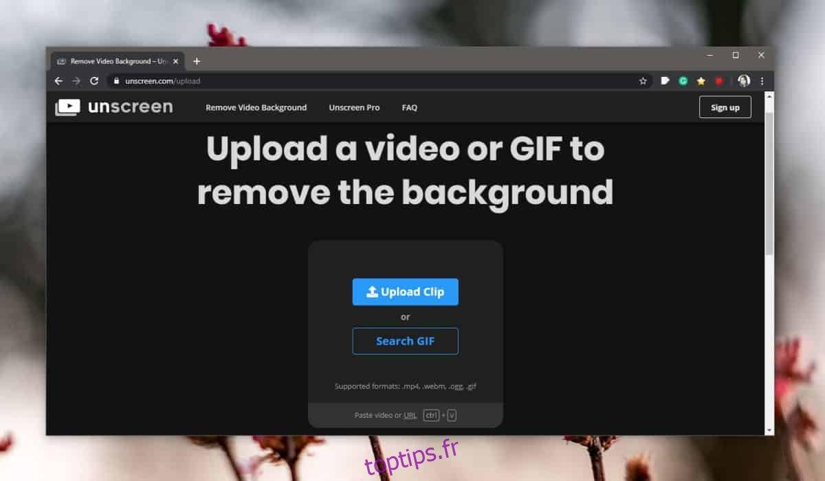 Comment supprimer l'arrière-plan d'un GIF
